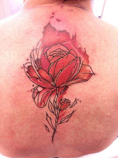 Rose-Sabine